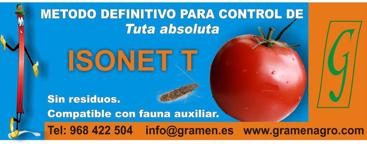 2ª VALLA ISONET T